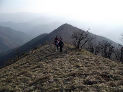 Поглед са Липара ка Козаревом брду - фото Никола