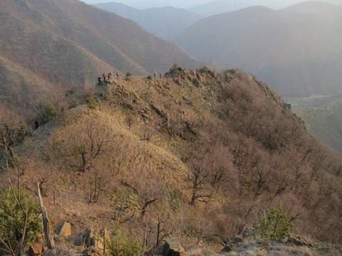 Атрактивни гребен са стенама - фото Мирко