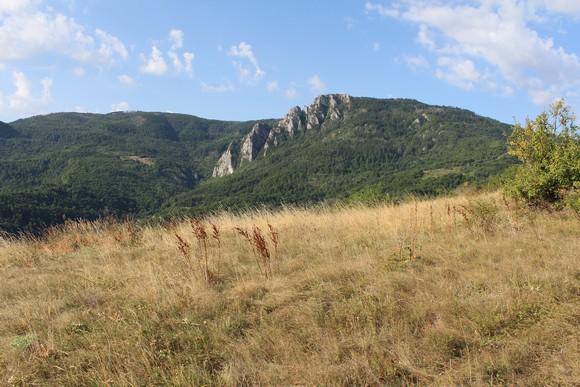 Предео Мокре горе посматран са наше стазе у силаску (Фото: Жарко Продановић)