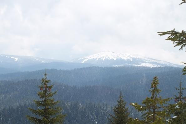 Панчићев врх (2017м) виђен са падина Кукавице.