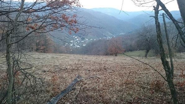 Село Дулене
